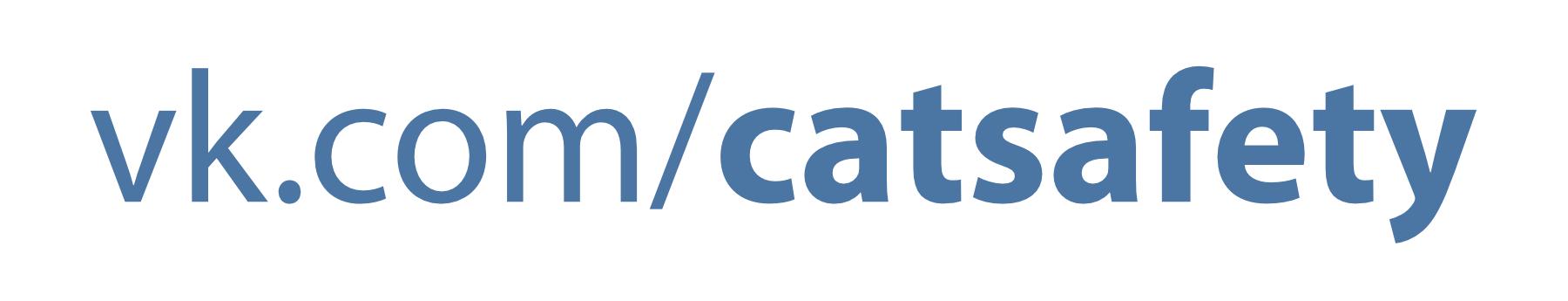 кошка на окошке группа в контакте
