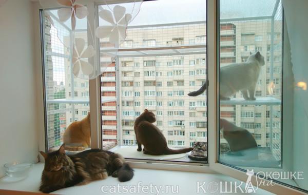 Кошачий балкончик стационарный