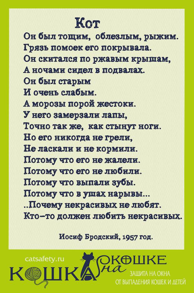catsafety.ru