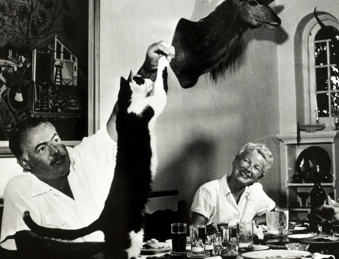 Literature Personalities, pic: circa 1940's, Author Ernest Hemingway watched by his wife Mary, feeds tit bits to the cat at dinner, Ernest Hemingway, (1899-1961) US writer of novels and short stories and Nobel Prize winner, also a keen sportsman, He was prone to a melancholic, self destructive personality (Photo by Popperfoto/Getty Images)