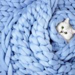 Лежанки для кошек из шерсти мериноса
