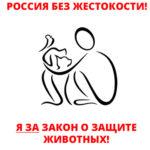 России нужен федеральный закон о защите животных