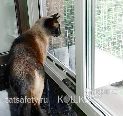Москитка для кошачьего балкончика
