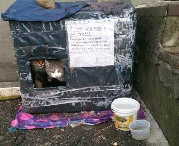 Утеплитель для кошачьего домика