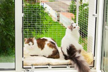 Кошачий балкончик съёмный на окно ПВХ