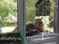 Вольер на окно прогулочный