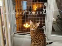 Решётка-на-деревянное-окно-для-безопасности-кошки-антикошка