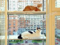 Стационарный-балкончик-на-окно-для-кошки-клетка-с-полками