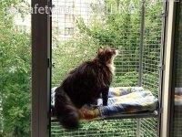 Съёмный вольер за коно для кошки