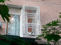 вольер-за-окно-для-кошки
