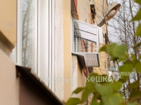 Вольер г-образное окно для кошек