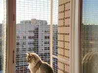 Вольер на окно для кота