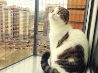 Вольер на окно