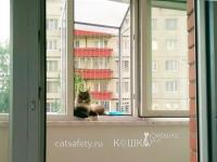 антикошка вольер выгул на окно (4)