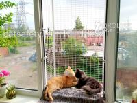 вольер-выгул-на-окно-кошачий-балкончик