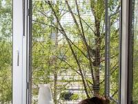 кошачий-балкон