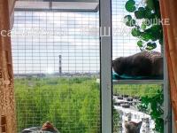 кошачий-выгул-на-окно