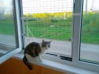 сетканазаказ-для-кошки