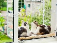 съёмный балкончик кошка ан окошке